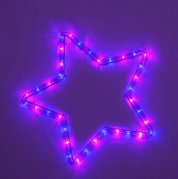 2023天降紫微星是女孩插图4