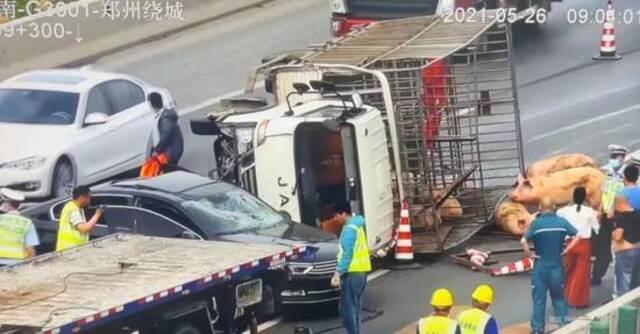 30头猪大闹郑州绕城高速 3人受伤 车辆排队5公里插图8